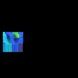 logo-lg-webex